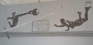 Роспись стены спортивного зала Педагогического колледжа в г. Петрозаводске
